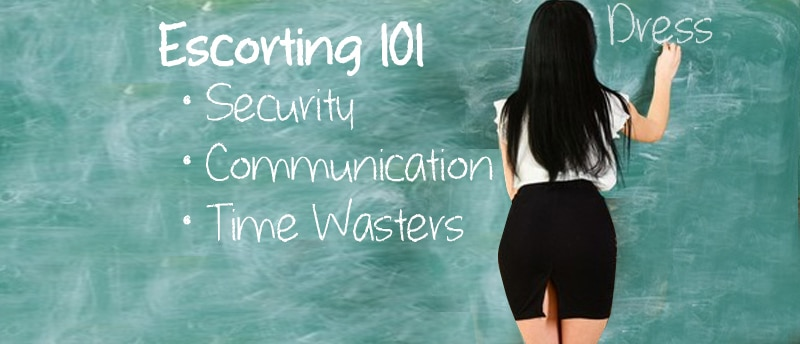 escort consulting 101